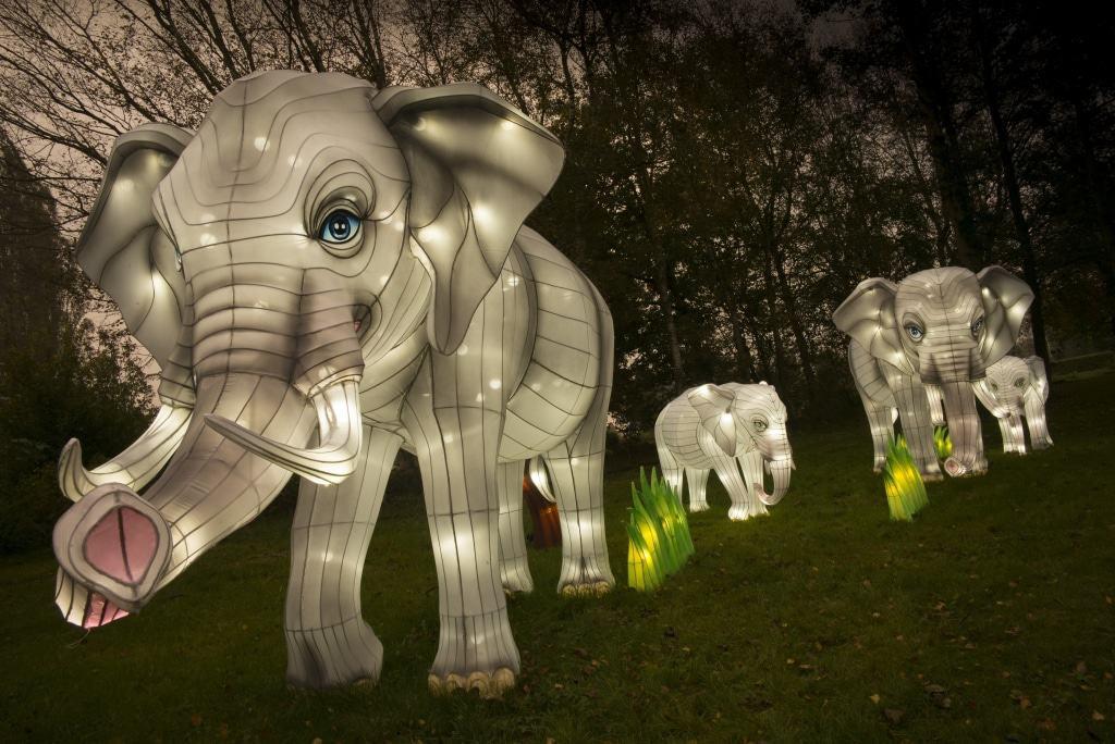 Elefanten - Lichtersafari 2017 - Foto: Serengeti-Park Hodenhagen