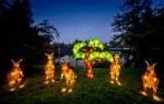 """Feierliche Eröffnung der """"Lichter-Safari"""" im Serengeti-Park"""