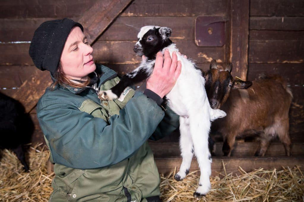 Bei den Zwergziegen im Streichelgehege hat sich Nachwuchs eingestellt – da schaut Tierpflegerin Silke Lohmann schon mal genauer hin. Foto: Wildpark Lüneburger Heide/Thomas Ix