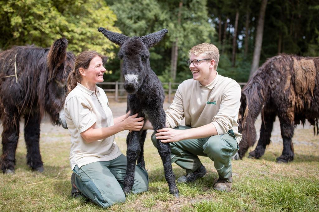 Silke Lohmann und Torben Lemmel sind sehr glücklich über den Nachwuchs dieser seltenen Rasse. Foto: Adrian Fohl