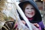 Halloween im Heide Park: Schaurig-schöner Gruselspaß im Oktober
