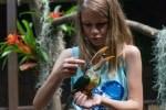 Mitmachfütterung bei den Tukanen in Pukara Foto: Weltvogelpark Walsrode