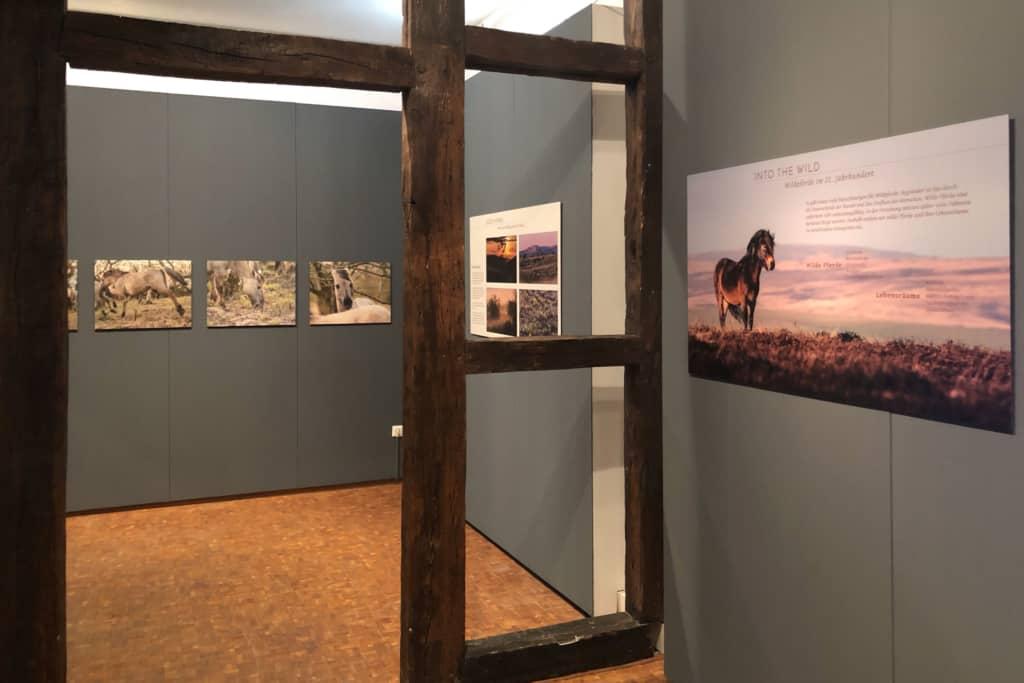 Blick in die Ausstellung, Foto: Marc Lubetzki