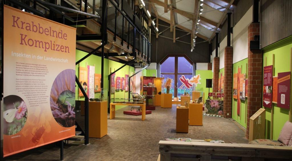 """Blick in die Ausstellung """"Krabbelnde Komplizen"""" im Freilichtmuseum bis 17.11.2019 Bild: FLMK"""