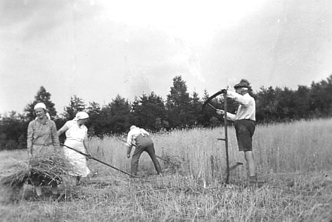 Getreideernte, von links Jutta Bossard, Wilma Krull, Johann Bossard, Emil Hegg, o.J. (um 1932-35) © Kunststätte Bossard