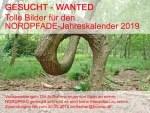 """NORDPFADE-Impressionen wie hier der """"Schlangenbaum"""" am NORDPFAD Wümmeniederung werden gesucht. Foto: Touristikverband Landkreis Rotenburg (Wümme) e.V."""