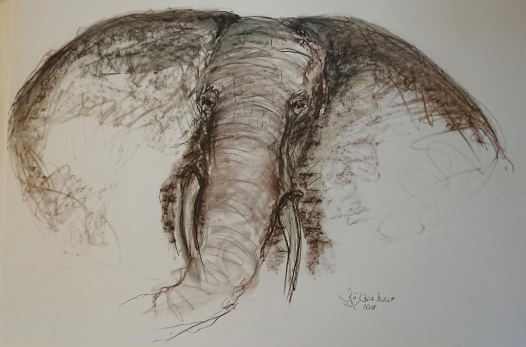 Doerte Pertiet - Elefant 1