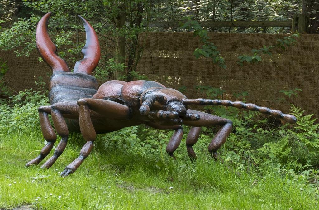 Insekten haben wichtige Funktionen in der Natur. Foto: Serengeti-Park Hodenhagen