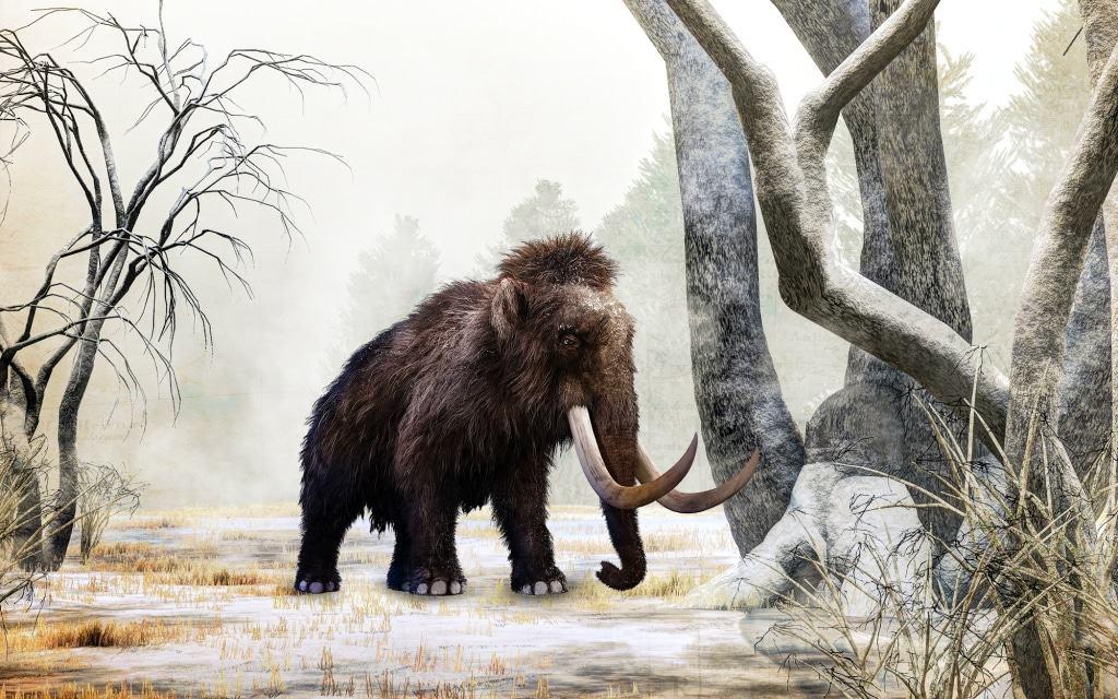 Bei der Eiszeit-Safari begegnen die Gäste unter anderem dem Mammut. Foto: Serengeti-Park
