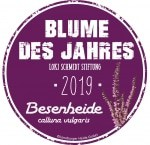 Die Besenheide (Calluna vulgaris) - Blume des Jahres 2019