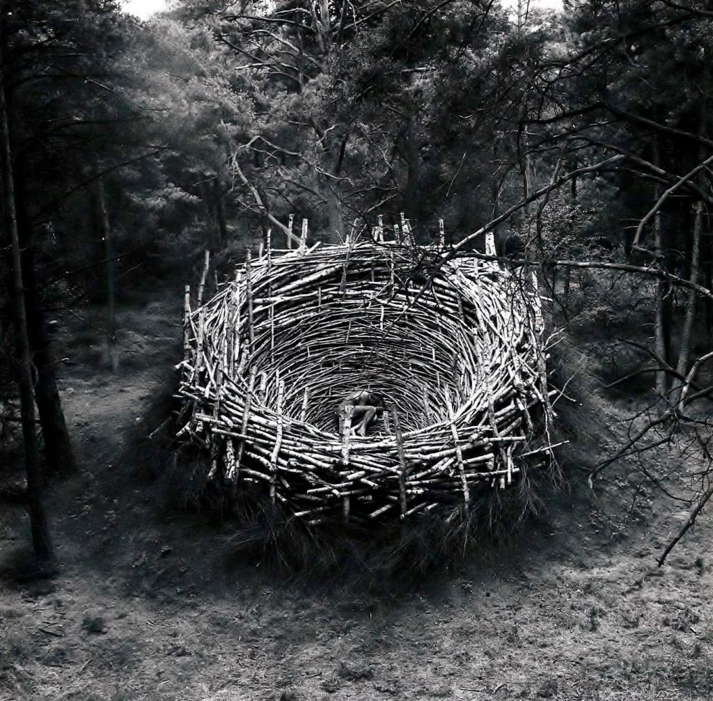 """Nils-Udo """"Nest"""", 1978 (Foto: Nils-Udo)"""