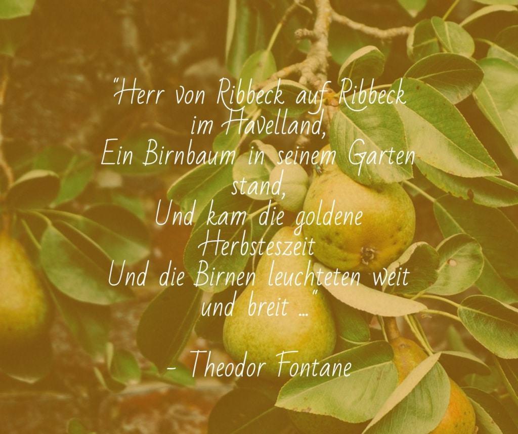 """Birnbaum mit Gedichtauszug """"Herr von Ribbeck..."""""""