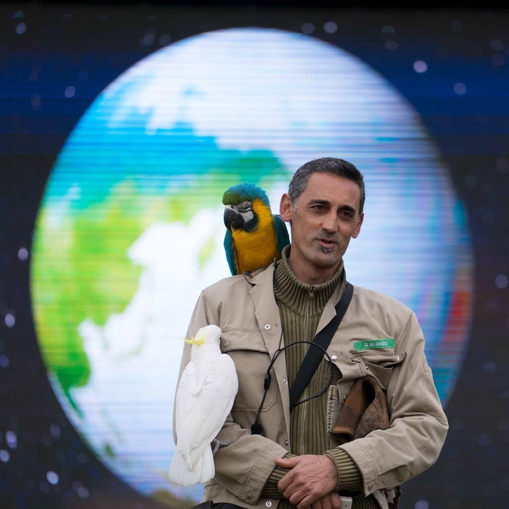 """Neues Motto der Indoorshow: """"Evolution des Fliegens"""". Foto: Weltvogelpark Walsrode"""