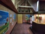 Wissenswelt rund um Bienen – das neue Bienenhaus im Weltvogelpark Walsrode Foto: Weltvogelpark Walsrode