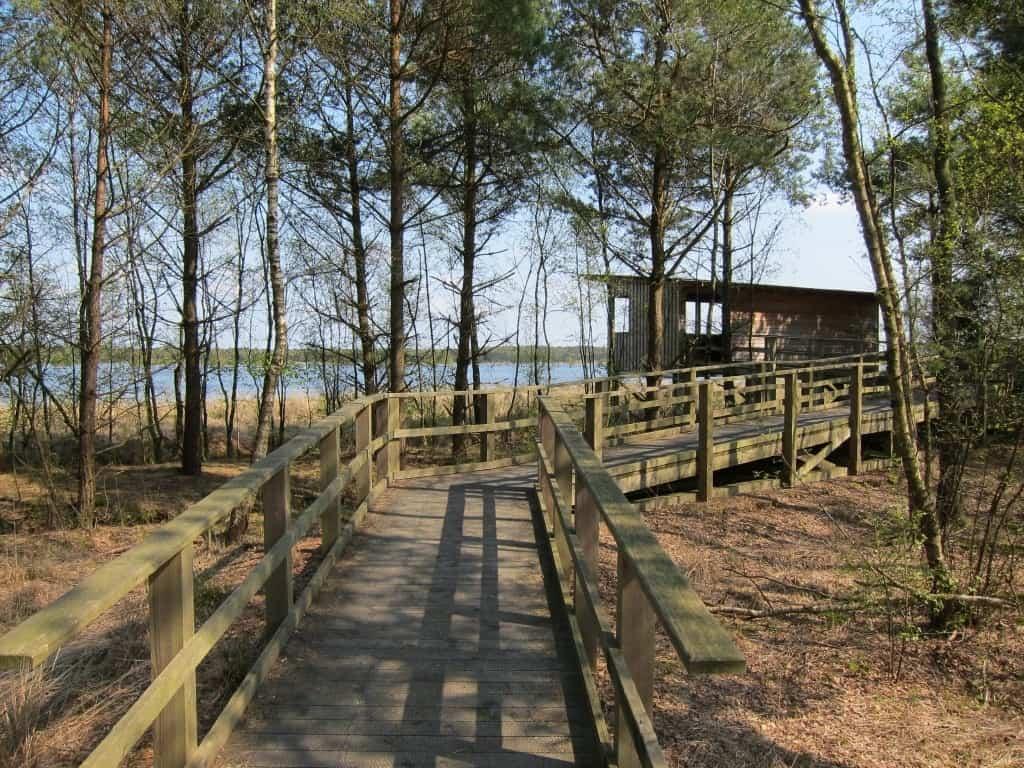 Barrierefrei zugängliche Aussichtsplattform auf die Vogelrastplätze im Tister Bauernmoor.