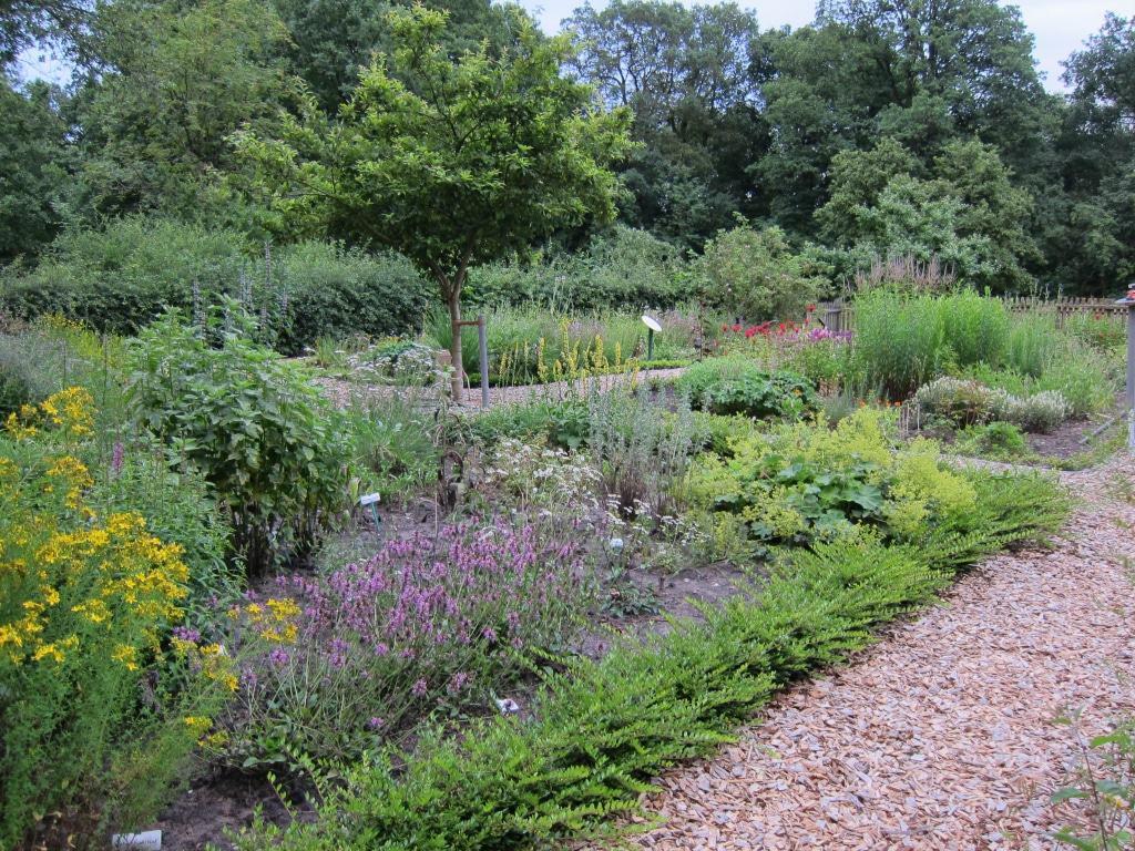 Da der Bauerngarten ökologisch bewirtschaftet wird, bietet er ausreichend Nahrung für Bienen und Schmetterlinge.