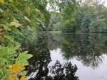 Beginnender Herbst am Teich in Niederhaverbeck