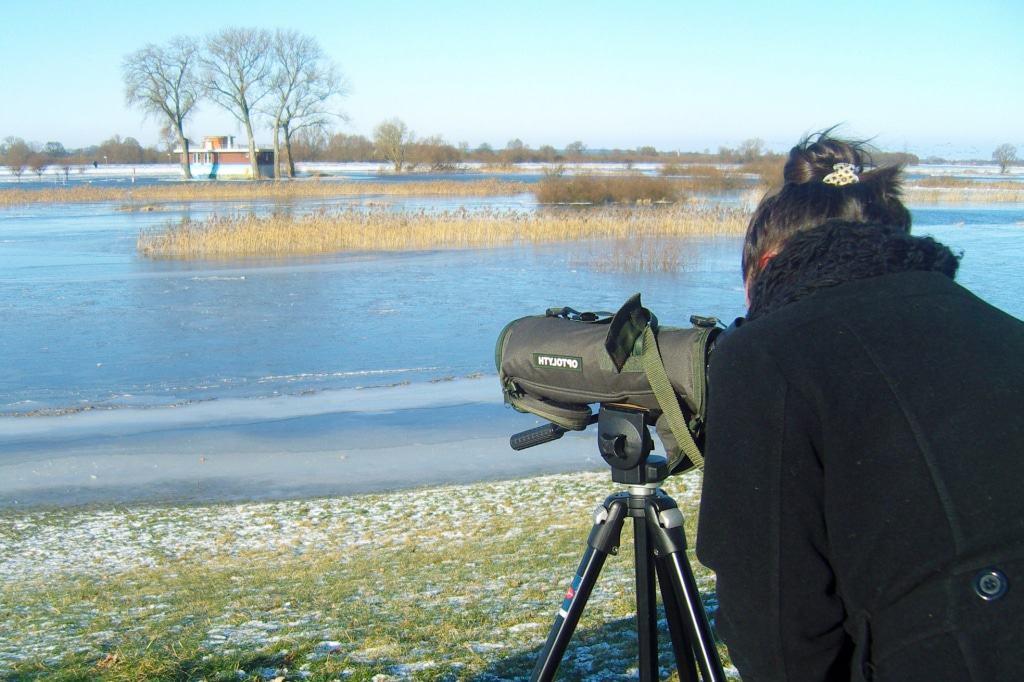 Beobachtung der Gastvögel mit dem Spektiv © Biosphaerium