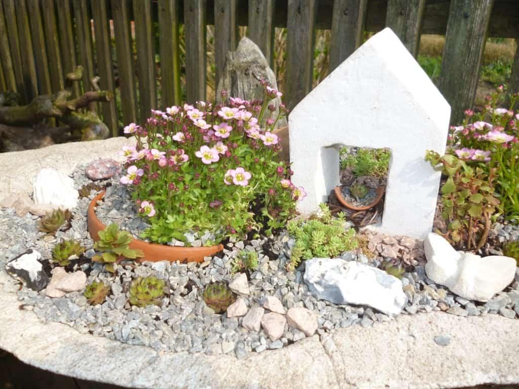 Bepflanzte Schale aus Designbeton mit Dekoration von Steinblattwerk aus Selsingen