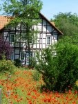 Auftakt zum Landsommer, Foto: Verein der Gästeführer/Innen im Heidekreis in der Lüneburger Heide e.V.