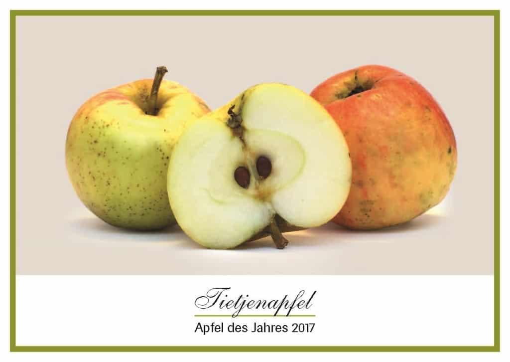 Der Uphuser Tietjenapfel, Apfel des Jahres 2017  Foto www.nimar-blume.de