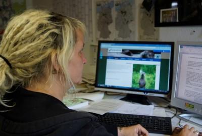 """Die Dipl.-Geografin Astrid Kiendl bearbeitet das Web-Portal """"Otter-Spotter"""". Foto: Aktion Fischotterschutz e. V."""