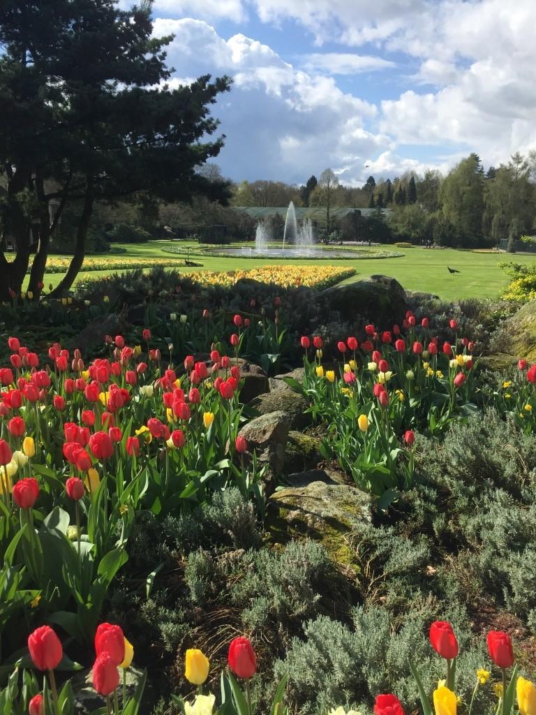 Frühjahr im Weltvogelpark Walsrode