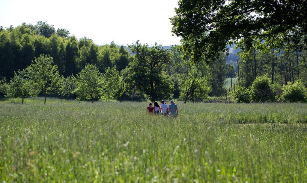 Frühsommer im Barfußpark, Foto: Barfußpark Lüneburger Heide