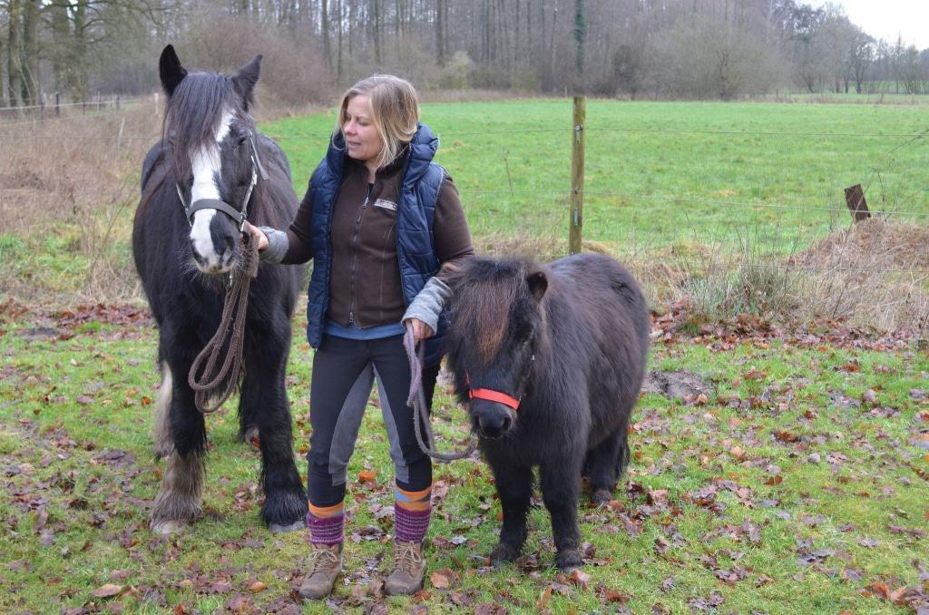 """Geführtes Ponyreiten ist eines der Mitmachangebote beim neuen """"Familienwochenende"""". Foto: Rundlingsmuseum in Lübeln"""