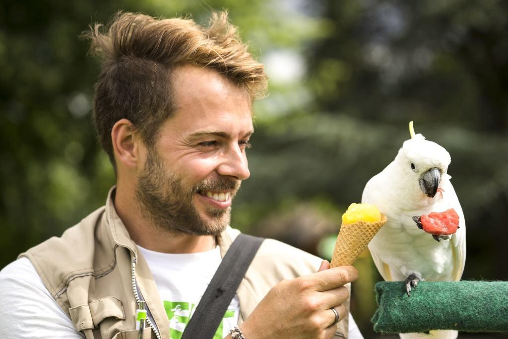 Sorgt für Temperaturausgleich, weil Vögel nicht schwitzen können: Ein Eis, gereicht von Tierpfleger und -trainer Lech Bretschek. Foto: Weltvogelpark Walsrode