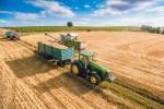 Bei der Getreideernte, Foto: Victor Hanacek, www.victorhanacek.com
