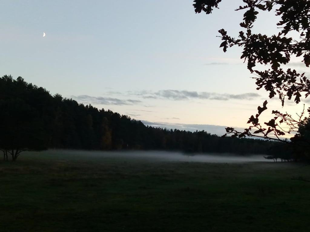 Herbstabend - Wiesenlandschaft mit Nebel und Mondsichel