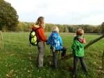 Herbstliches Wandern auf dem NORDPFAD Eichholz-Franzhorn (c) TouROW