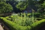 Vom Nutzgarten zur Freizeitoase: Der Garten im Wandel der Zeit