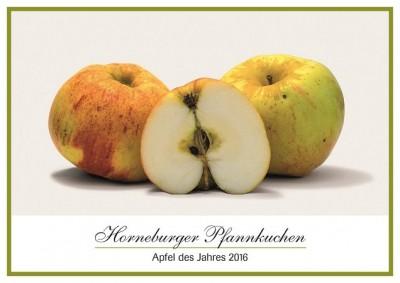 Apfel des Jahres 2016: Horneburger Pfannkuchen Bild: Norddeutsche Apfeltage