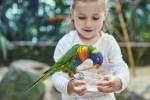Indoorattraktionen für die ganze Familie im Weltvogelpark Walsrode. Foto: Weltvogelpark