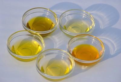Kostproben der kaltgepressten Bioöle der Ölmühle Godenstedt in Glasschälchen