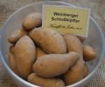 """Hörnchenförmig, gelb und festkochend: Die alte Sorte """"Weinberger Schloßkipfler"""" ist die """"Kartoffel des Jahres"""" 2017. Foto: Stegmann / honorarfrei"""