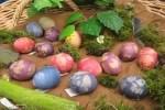 Osterausflug für Eierkünstler und Frühlingsquizzer in das Biosphaerium Elbtalaue
