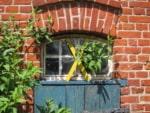 Virtuelle Landpartie 2020 - Bilder vergangener Kulturelle Landpartien® im Wendland - hier: gelbes X