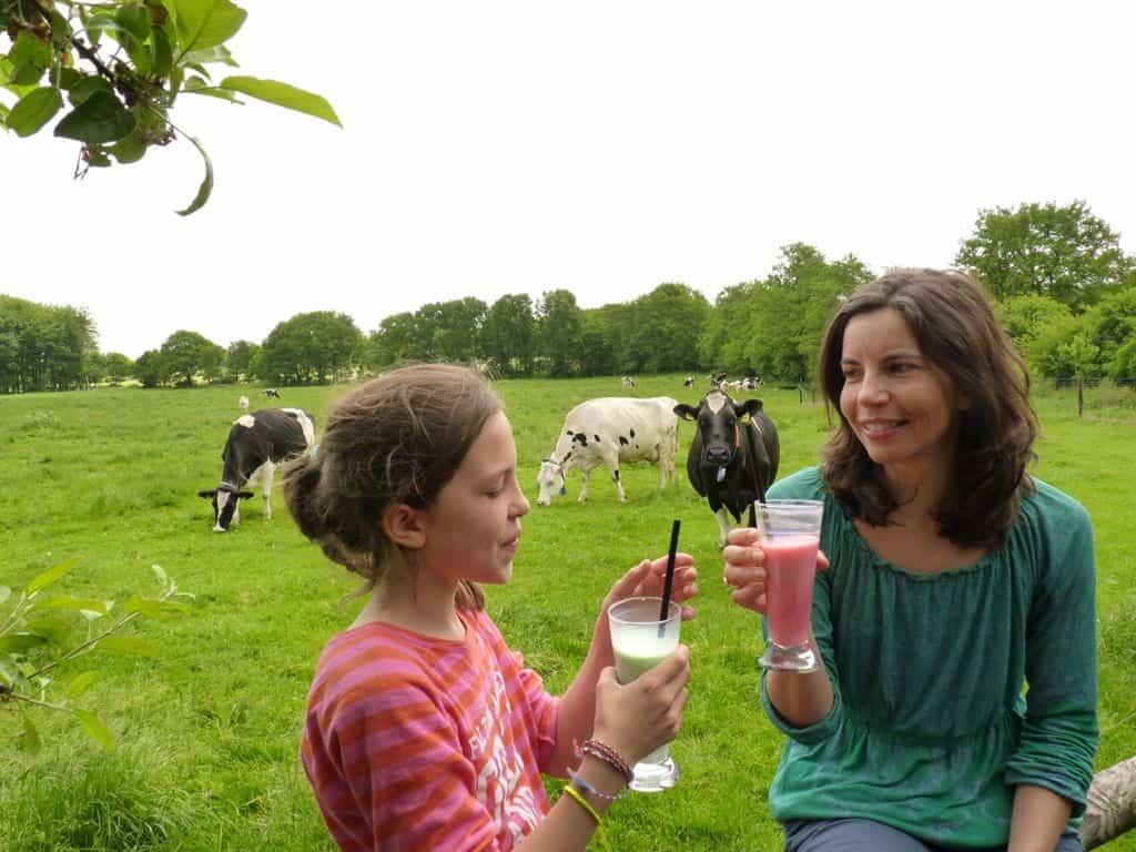 Melkhüs bieten leckere Milkshakes an