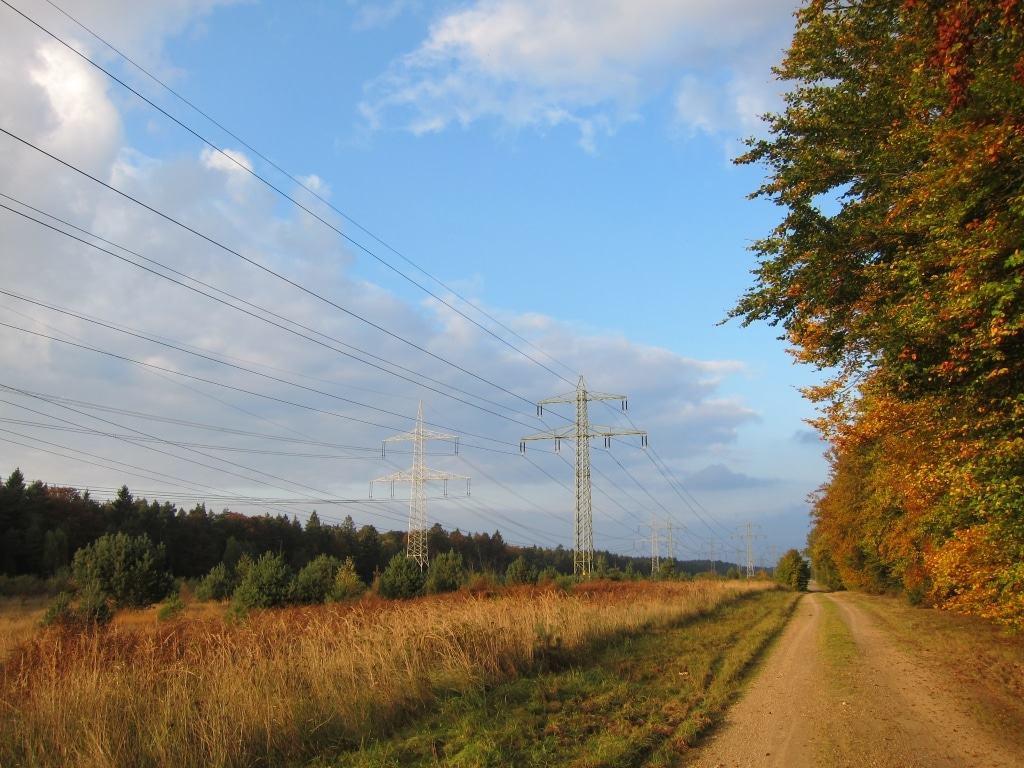 """Letztes Teilstück des Wanderweges W 8 """"Der Urwald im Lüß"""" entlang einer Heidefläche mit Hochspannungsleitung"""