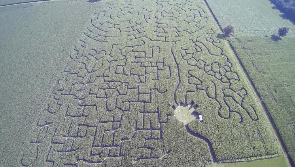 Luftaufnahme des Maislabyrinths in Rockstedt am 18. Juli 2017 Foto/Video: Hans-Heinrich Heins