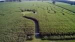 Luftaufnahme des Maislabyrinths Rockstedt aus 2017 - natürlich ist das Labyrinth in diesem Jahr neu!