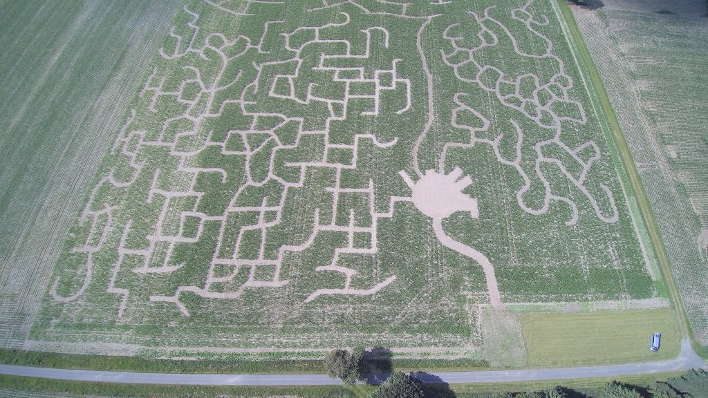 Luftbild - aufgenommen mit einer Drohne: Maislabyrinth 27404 Rockstedt - untere Labyrinthe, Eingang und Parkplatz