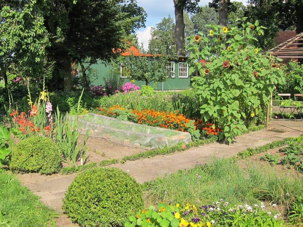 Bauerngarten am Melkhus in Schneverdingen-Heber