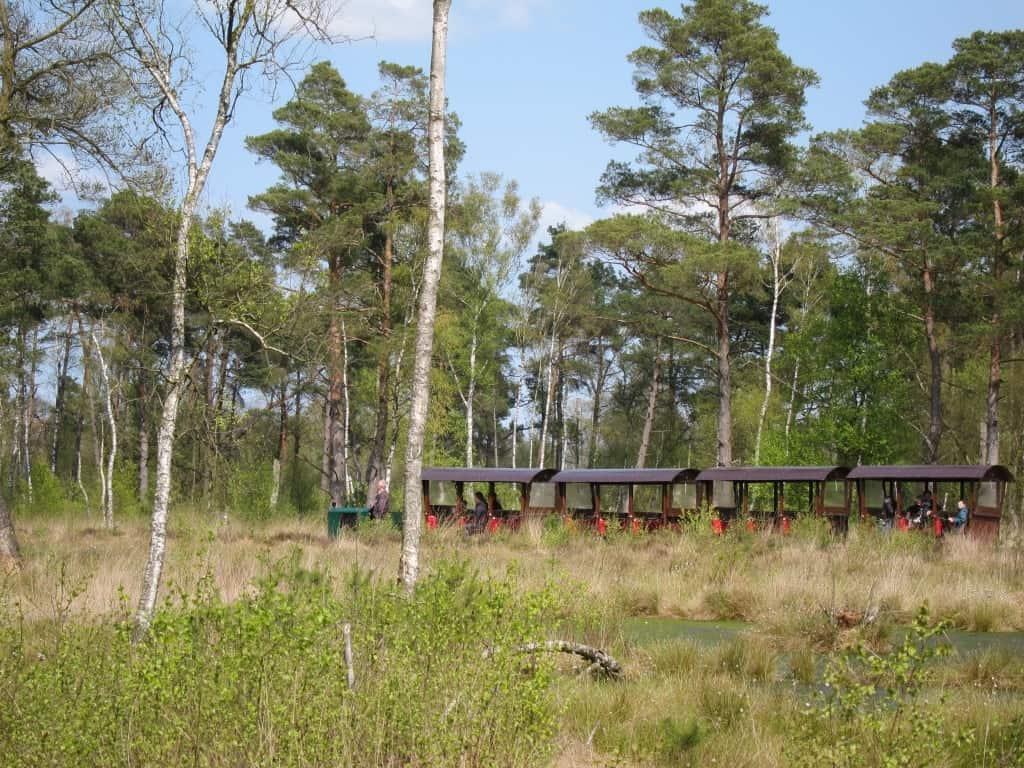 Eine Attraktion für Groß und Klein: Die Moorbahn im Tister Bauernmoor mit 4 km Strecke.