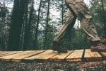 Naturerlebnis Wandern im Wald
