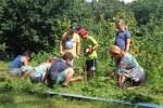 Anpacken, Spaß haben und nebenbei etwas über die Heide-Heimat lernen – das erlebten die Teilnehmer der Naturpark-Sommercamps. Foto: Naturpark Lüneburger Heide