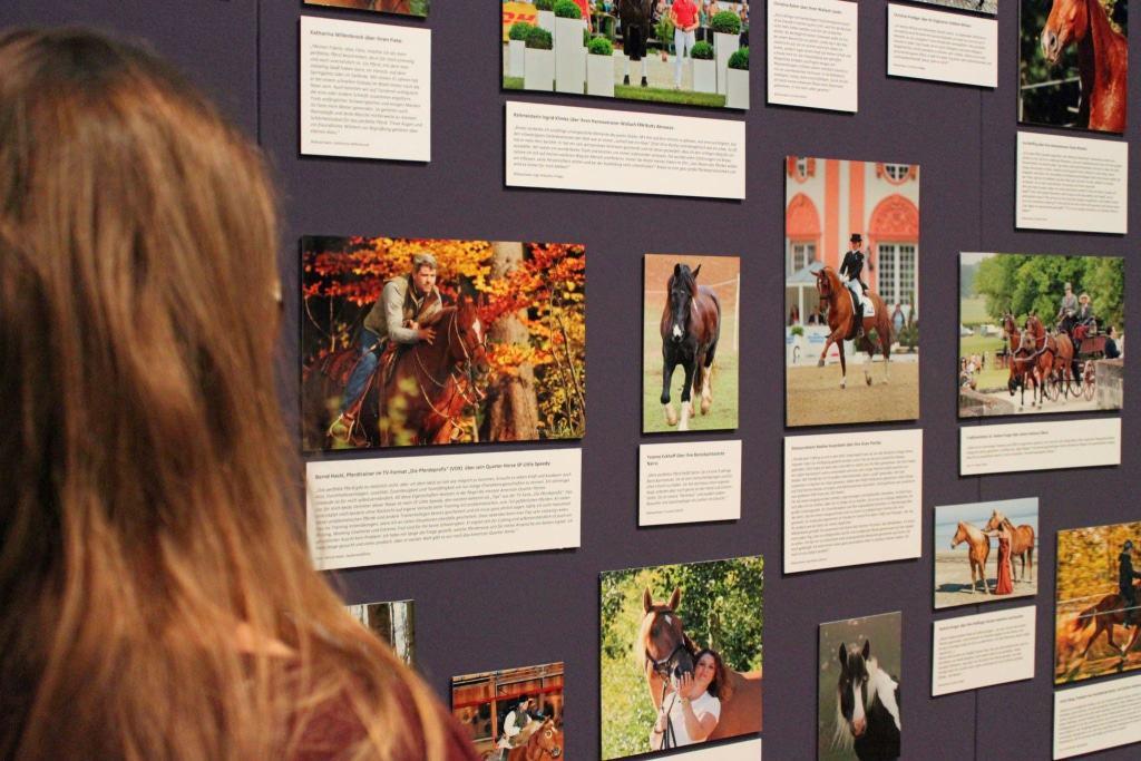 Lieblingspferde verschiedener Persönlichkeiten und Pferdefreunde Foto © Deutsches Pferdemuseum